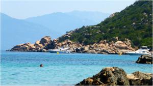 Korsyka Buskamper 08